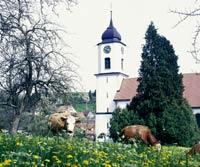 Kirche Mühlingen