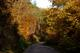 Der Hegau: ein Herbstwunder