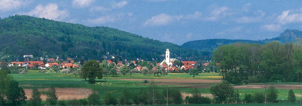 Blick auf Gottmadingen