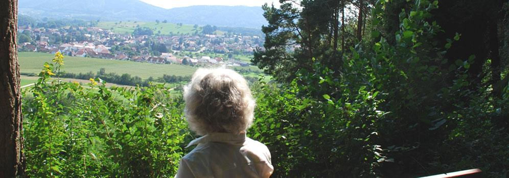Ausblick Orsingen-Nenzingen