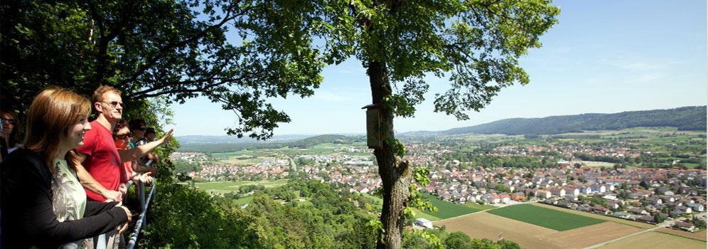 Blick auf Rielasingen-Worblingen